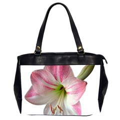 Flower Blossom Bloom Amaryllis Office Handbags (2 Sides)  by Nexatart