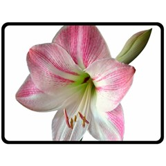 Flower Blossom Bloom Amaryllis Fleece Blanket (large)