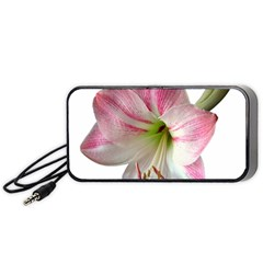 Flower Blossom Bloom Amaryllis Portable Speaker (black)