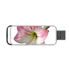 Flower Blossom Bloom Amaryllis Portable Usb Flash (one Side)