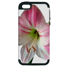 Flower Blossom Bloom Amaryllis Apple Iphone 5 Hardshell Case (pc+silicone)
