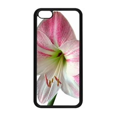 Flower Blossom Bloom Amaryllis Apple Iphone 5c Seamless Case (black) by Nexatart