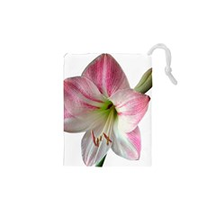 Flower Blossom Bloom Amaryllis Drawstring Pouches (xs)  by Nexatart