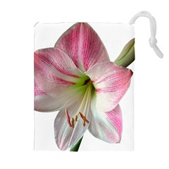 Flower Blossom Bloom Amaryllis Drawstring Pouches (extra Large)