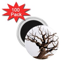 Tree Isolated Dead Plant Weathered 1 75  Magnets (100 Pack)