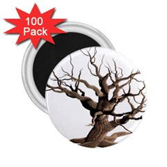 Tree Isolated Dead Plant Weathered 2 25  Magnets (100 Pack)