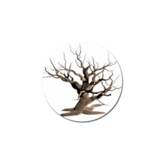 Tree Isolated Dead Plant Weathered Golf Ball Marker