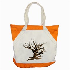 Tree Isolated Dead Plant Weathered Accent Tote Bag by Nexatart