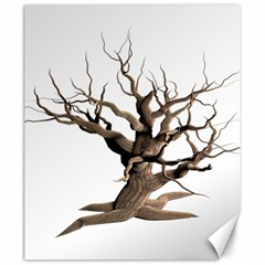 Tree Isolated Dead Plant Weathered Canvas 20  X 24
