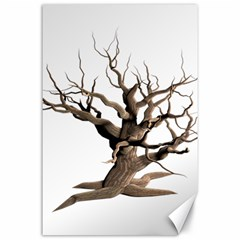 Tree Isolated Dead Plant Weathered Canvas 24  X 36  by Nexatart