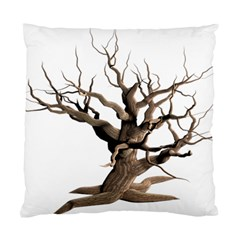 Tree Isolated Dead Plant Weathered Standard Cushion Case (two Sides) by Nexatart