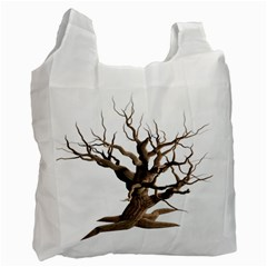 Tree Isolated Dead Plant Weathered Recycle Bag (one Side) by Nexatart