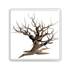 Tree Isolated Dead Plant Weathered Memory Card Reader (square)  by Nexatart