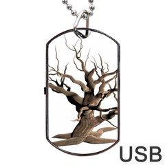 Tree Isolated Dead Plant Weathered Dog Tag Usb Flash (two Sides) by Nexatart