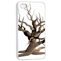 Tree Isolated Dead Plant Weathered Apple Iphone 4/4s Seamless Case (white)