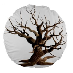 Tree Isolated Dead Plant Weathered Large 18  Premium Round Cushions by Nexatart