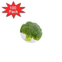 Broccoli Bunch Floret Fresh Food 1  Mini Magnets (100 Pack)  by Nexatart