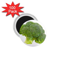 Broccoli Bunch Floret Fresh Food 1 75  Magnets (100 Pack)