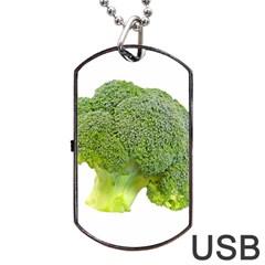 Broccoli Bunch Floret Fresh Food Dog Tag Usb Flash (one Side)