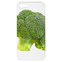 Broccoli Bunch Floret Fresh Food Apple Iphone 5 Hardshell Case