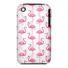 Pink Flamingos Pattern Iphone 3s/3gs by Nexatart