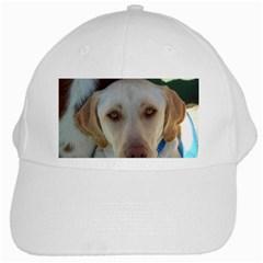 2 Yellow Lab White Cap by TailWags