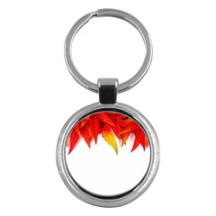 Abstract Autumn Background Bright Key Chains (round)  by Nexatart