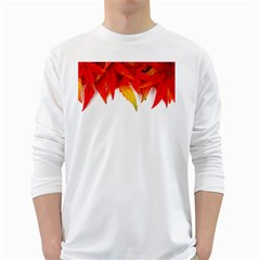 Abstract Autumn Background Bright White Long Sleeve T Shirts