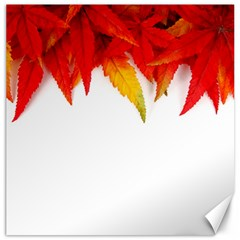 Abstract Autumn Background Bright Canvas 20  X 20   by Nexatart
