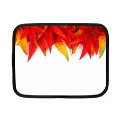 Abstract Autumn Background Bright Netbook Case (small)  by Nexatart