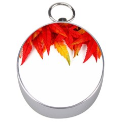 Abstract Autumn Background Bright Silver Compasses