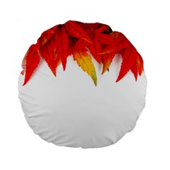Abstract Autumn Background Bright Standard 15  Premium Flano Round Cushions by Nexatart