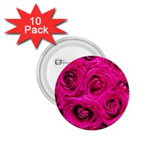 Pink Roses Roses Background 1 75  Buttons (10 Pack) by Nexatart