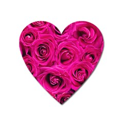 Pink Roses Roses Background Heart Magnet