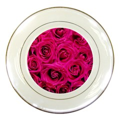 Pink Roses Roses Background Porcelain Plates