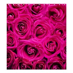 Pink Roses Roses Background Shower Curtain 66  X 72  (large)  by Nexatart