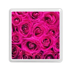 Pink Roses Roses Background Memory Card Reader (square)  by Nexatart