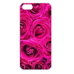 Pink Roses Roses Background Apple Iphone 5 Seamless Case (white)