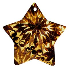 Mussels Lamp Star Pattern Ornament (star)