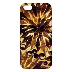 Mussels Lamp Star Pattern Iphone 5s/ Se Premium Hardshell Case by Nexatart