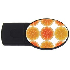 Orange Discs Orange Slices Fruit Usb Flash Drive Oval (2 Gb)