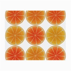 Orange Discs Orange Slices Fruit Small Glasses Cloth (2 Side) by Nexatart