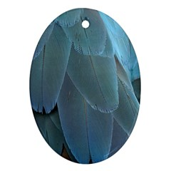 Feather Plumage Blue Parrot Ornament (oval) by Nexatart