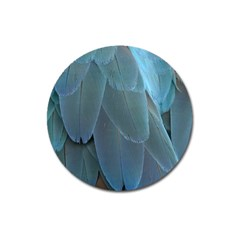 Feather Plumage Blue Parrot Magnet 3  (round) by Nexatart