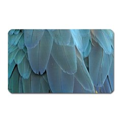 Feather Plumage Blue Parrot Magnet (rectangular)