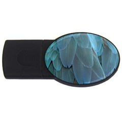 Feather Plumage Blue Parrot Usb Flash Drive Oval (4 Gb) by Nexatart
