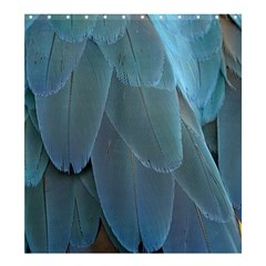 Feather Plumage Blue Parrot Shower Curtain 66  X 72  (large)