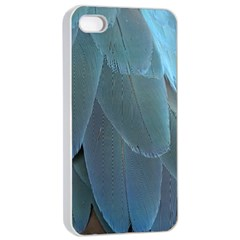 Feather Plumage Blue Parrot Apple Iphone 4/4s Seamless Case (white) by Nexatart