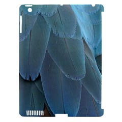 Feather Plumage Blue Parrot Apple Ipad 3/4 Hardshell Case (compatible With Smart Cover) by Nexatart