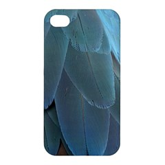 Feather Plumage Blue Parrot Apple Iphone 4/4s Premium Hardshell Case by Nexatart